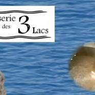 Brasserie des 3 Lacs